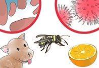 Риносинусит аллергического, гнойного, вазомоторного и других типов
